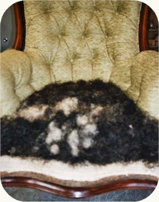 Best quality horse hair used for second stuffing.